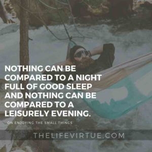 Leisure and Sleep are helpful for Enjoying Life