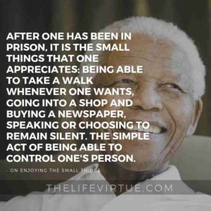 After one has been in prison, it is the small things that one appreciates: being able to take a walk whenever one wants, going into a shop and buying a newspaper, speaking or choosing to remain silent. The simple act of being able to control one's person. - Nelson Mandela