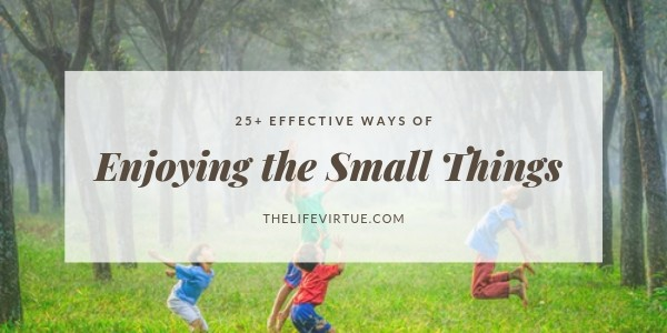 Enjoying the Small Things in Life Featured Image