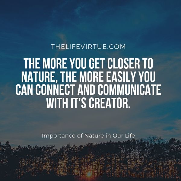 Observing nature connects you with God which explains the importance of Nature in life