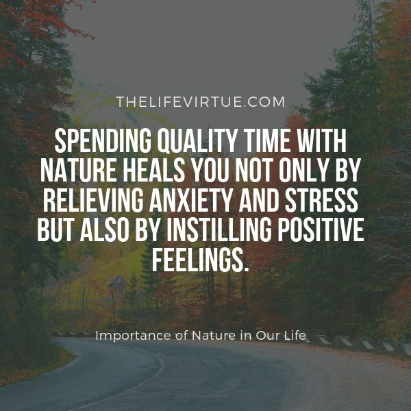 The importance of Nature in our life lies in the fact that it reduces stress and anxiety