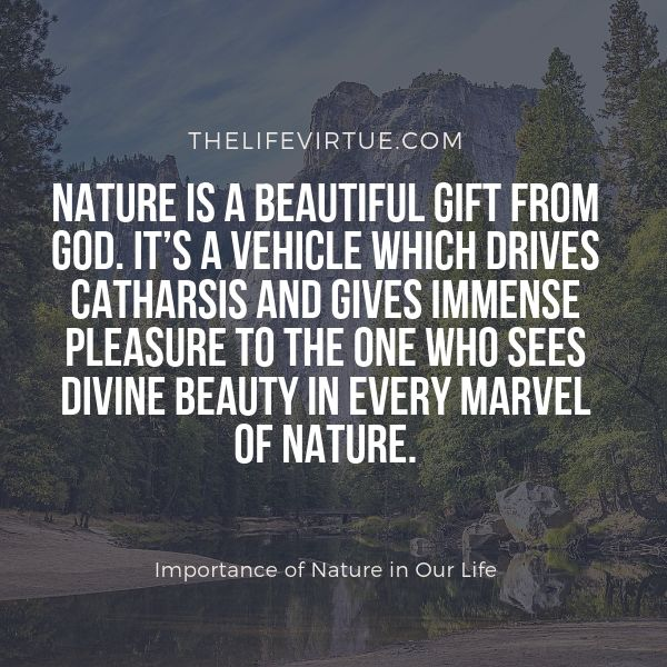 Nature is the best gift from God to humanity.