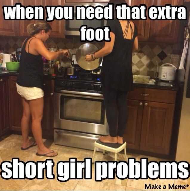 Short Girl Memes (3)