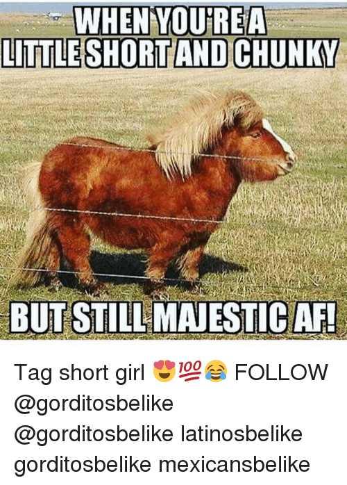 Short Girl Memes (4)