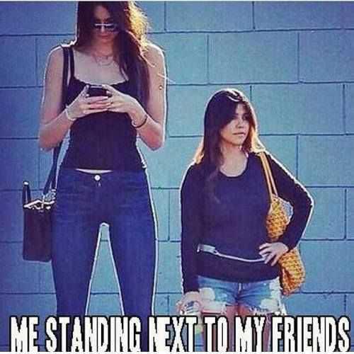 Short Girlfriend Memes (4)
