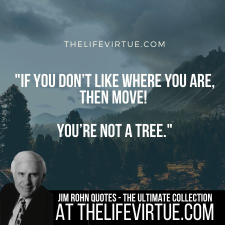 Jim Rohn Quotes - Move You are not tree