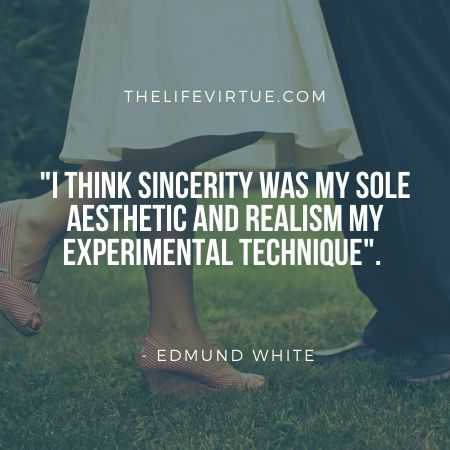 Aesthetic Quotes by Edmund White