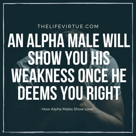 how alpha males show love?