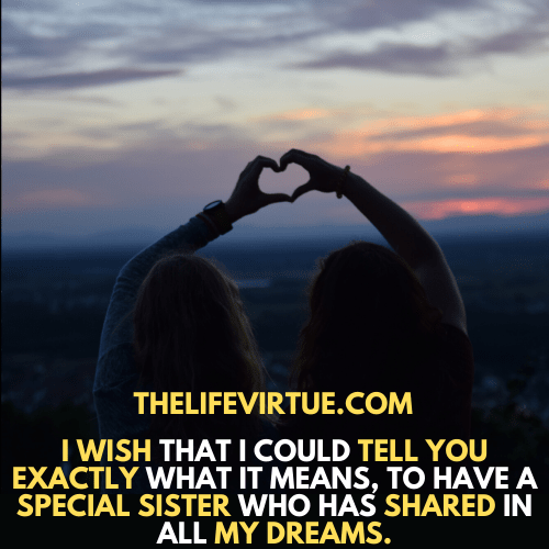 Sister in law quotes