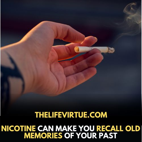 Nicotine can help you recall old memories of past