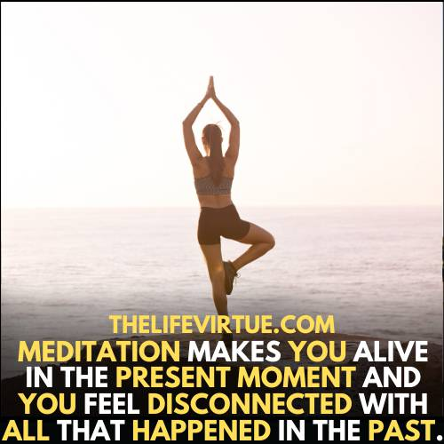 how to feel alive? - meditation makes you alive