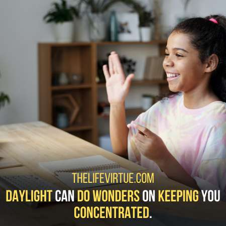 Daylight helps You Concentrate